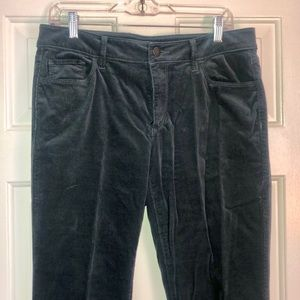 Loft tall corduroy boot cut pants